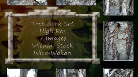 Tree Bark Texture Photoshop Set