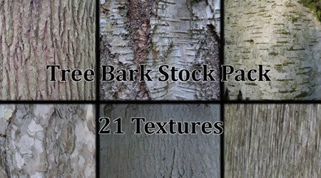 Tree Bark Texture Stock Pack