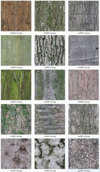 15 Free Seamless Tree Bark Textures