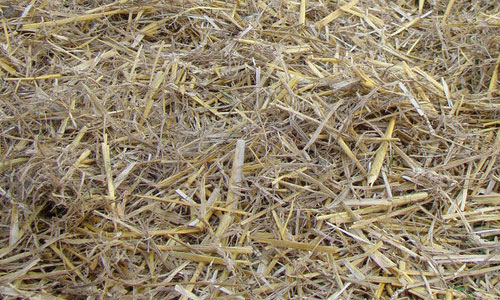 Straw and Hay